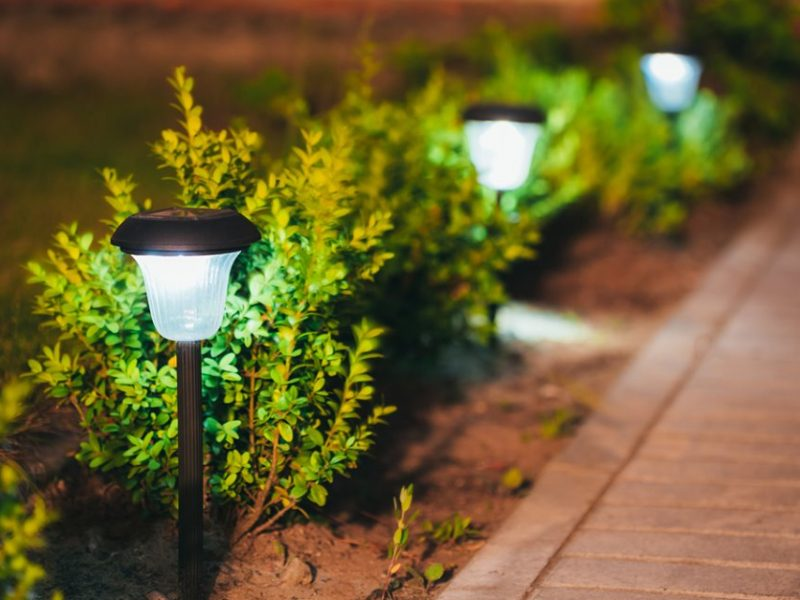 10 Best Low Voltage Transformer For Landscape Lighting 2019