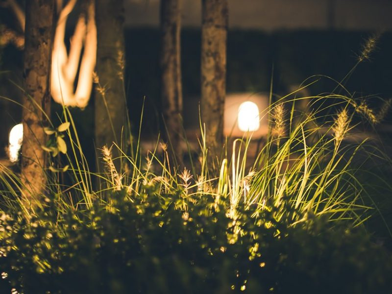 Patio Lawn Low Voltage Lighting