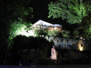 Floodlights in the garden